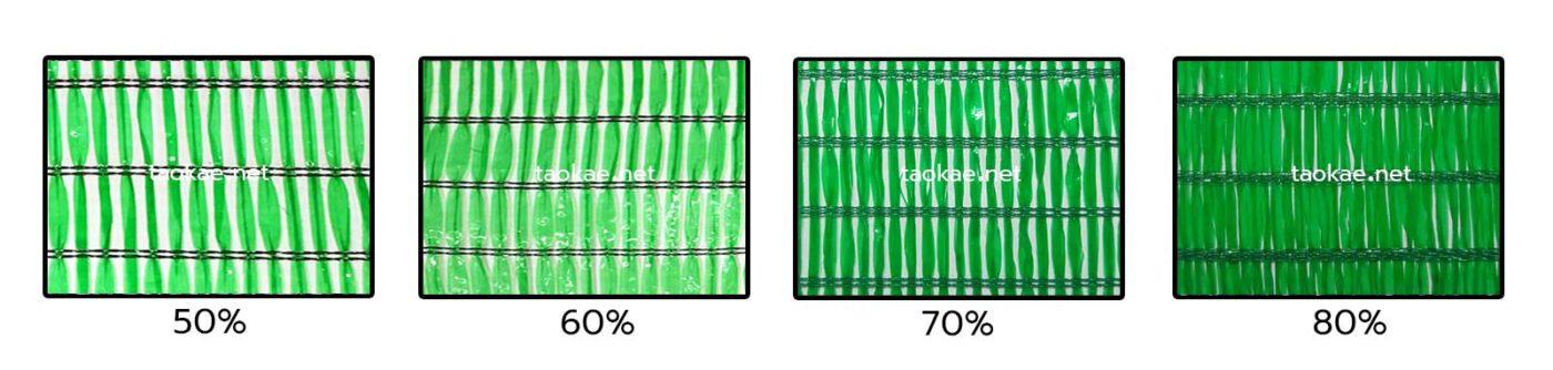 แสลน1เข็ม สีเขียว